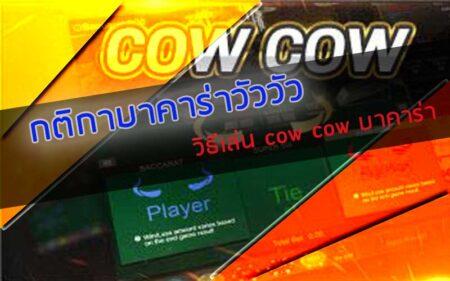 กติกาบาคาร่าวัววัว